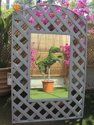 Trellis with Mirror Image